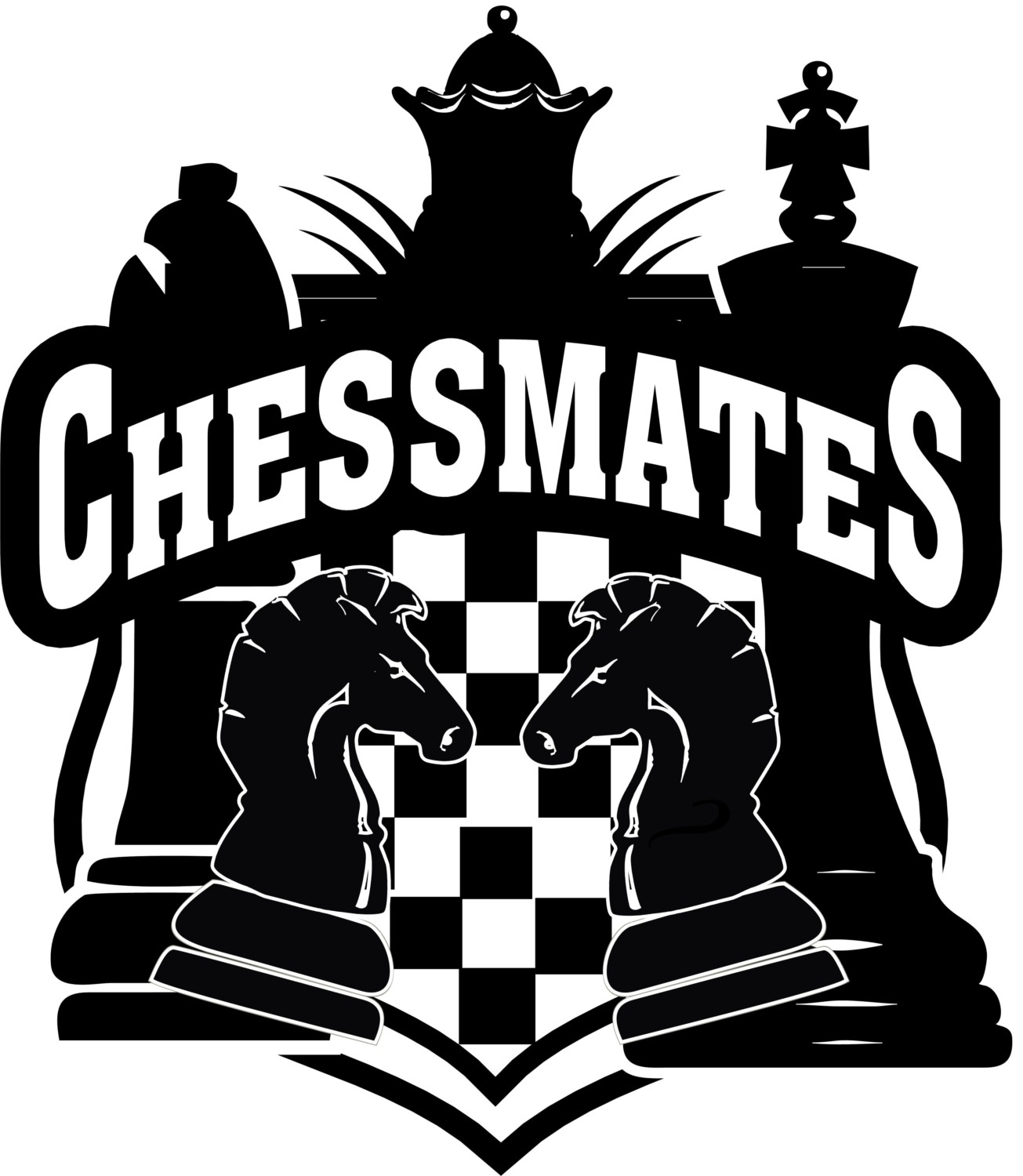 As A Colorado Chess Club Chessmates Provides Camps Tournaments Private Lessons Clubs And Online Instruction In Fort